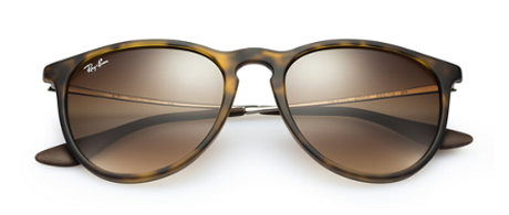 Ray-Ban Erika Tortoise Shell Sunglasses