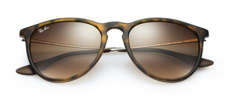 Ray-Ban Erika Tortoise Shell Sunglasses
